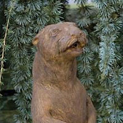 Sitting Otter - Plumbed