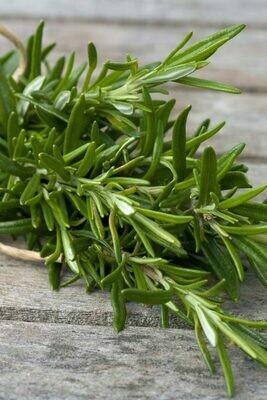 Rosemary Organic 1 pint