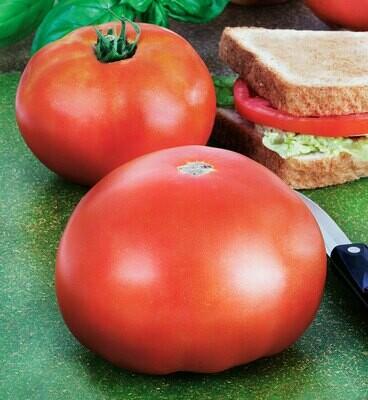 Tomato Park's Whopper