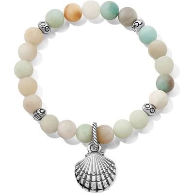 Brighton Sea Shore Shell Stretch Bracelet