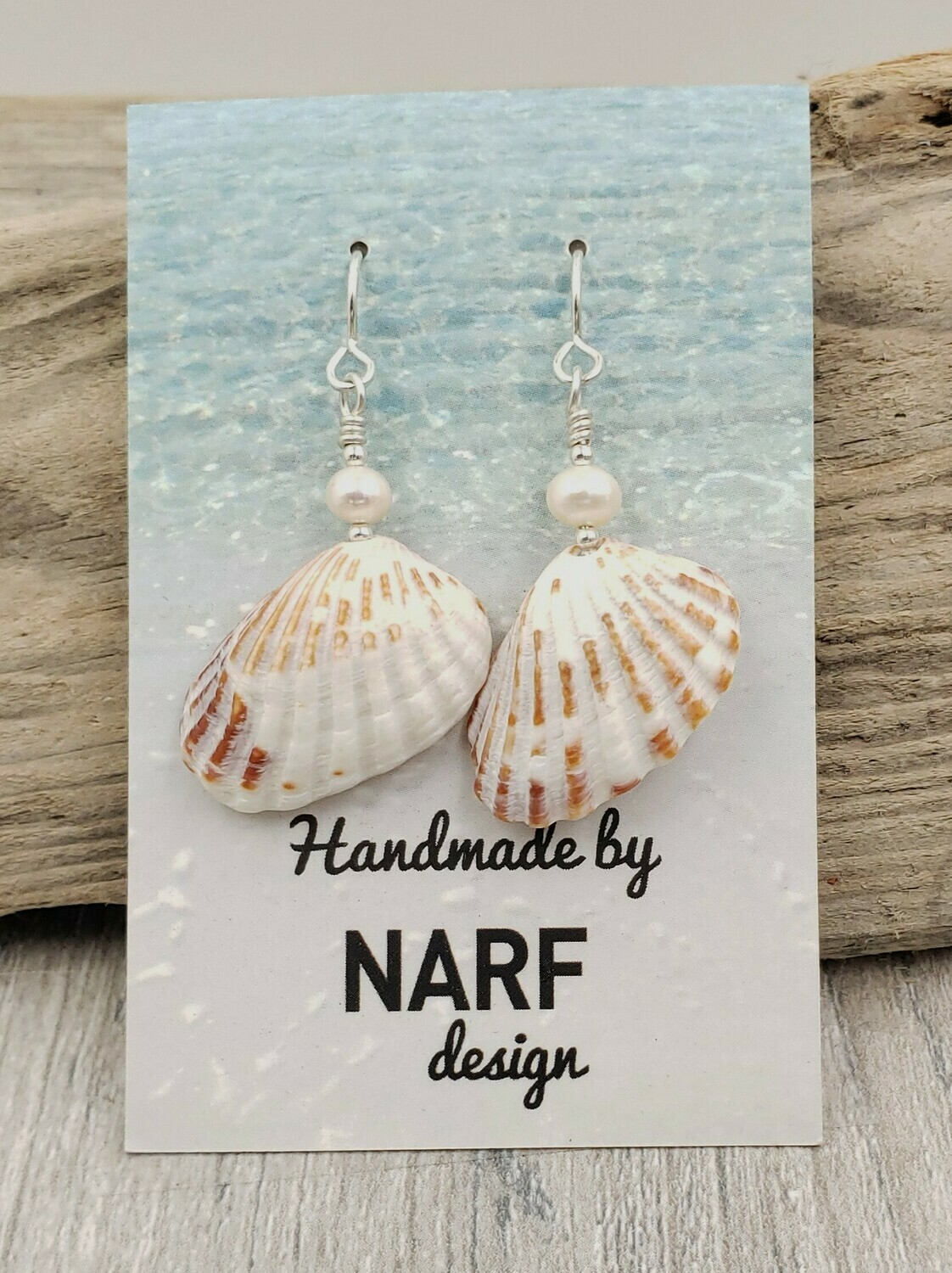Broad Ribbed Cardita Shell Earrings with Freshwater Pearls