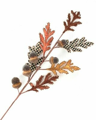 Acorn and oak leaf stem