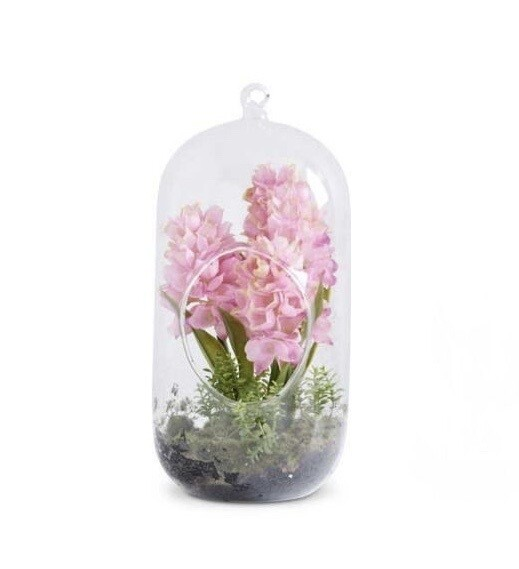 Glass dome with hyacinth pink
