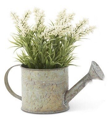 Tin watering can with lavender white