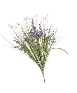 Spring bush heather purple