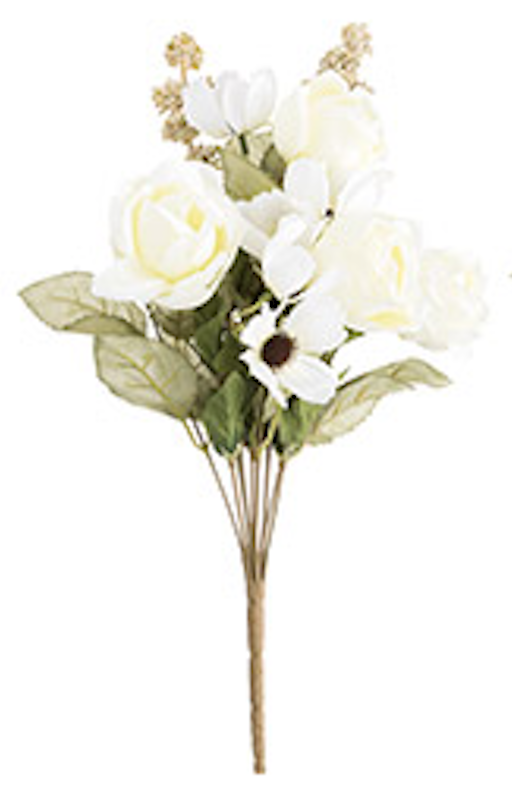 Cabbage rose bush white
