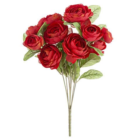 Ranunculus bush red