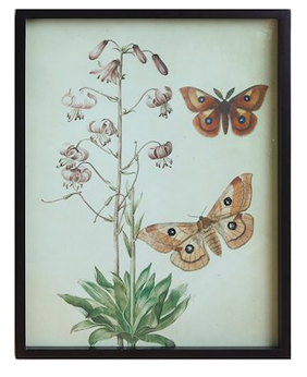 Butterfly wall decor A 23 inch
