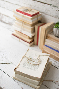 REPURPOSED BOOK BUNDLE