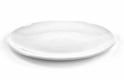 SX002 Flat Plate Nature