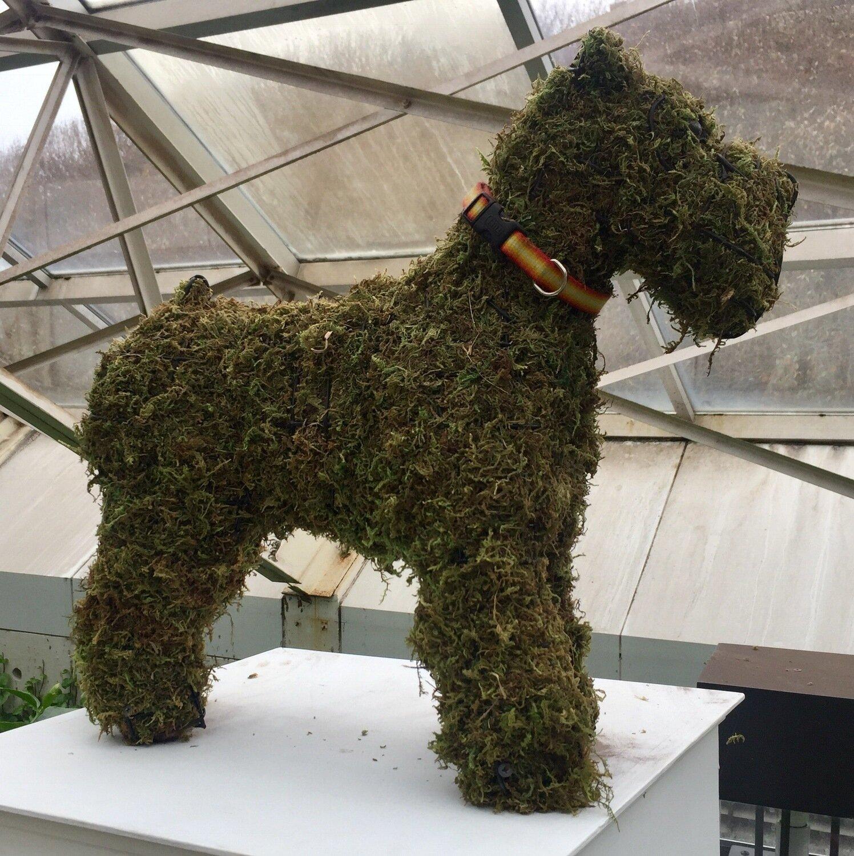 Schnauzer Topiary