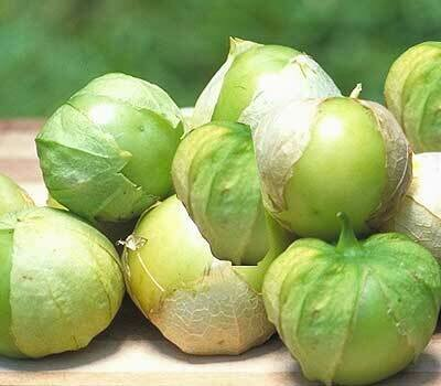 Tomatillo, Toma Verde