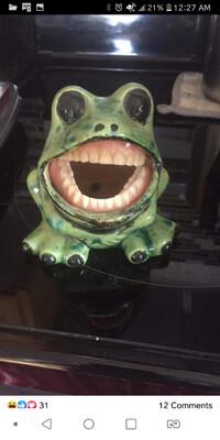 HB- Frog Sponge Holder