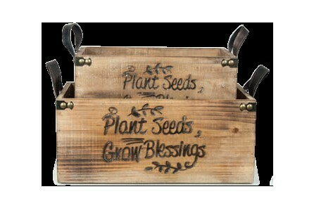 LG Grow Blessings Crate