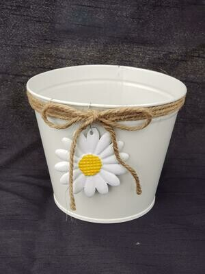 MD White Daisy Pot
