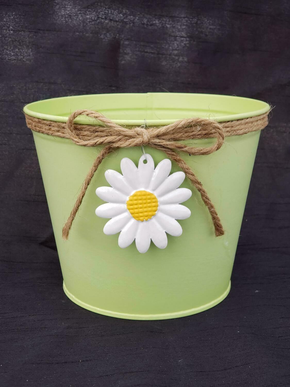 MD Green Daisy Pot