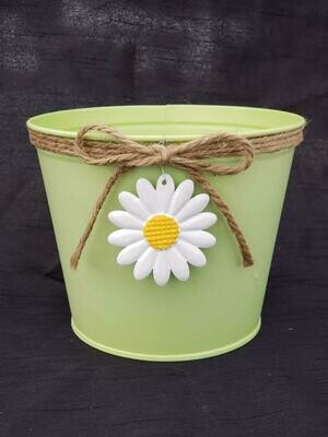 SM Green Daisy Pot
