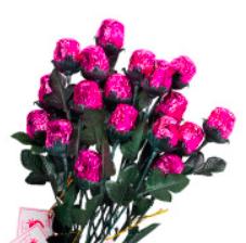 Chocolate Rose, pink