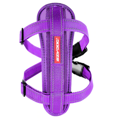 EZY CHEST PLATE PURPLE MD