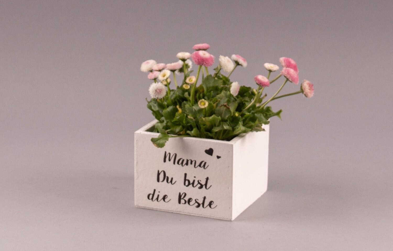 """Blumenkistchen """"Mama Du bist die Beste"""""""