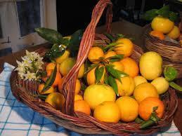 Arance e Limoni - 5 kg