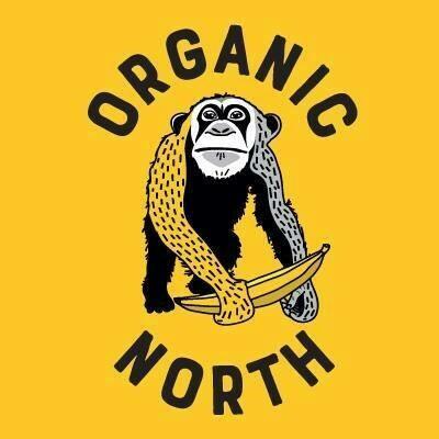 Organic Veg Box 4th June (Large)