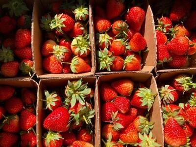 Strawberries (Hereford)