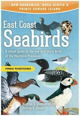 East Coast Seabirds