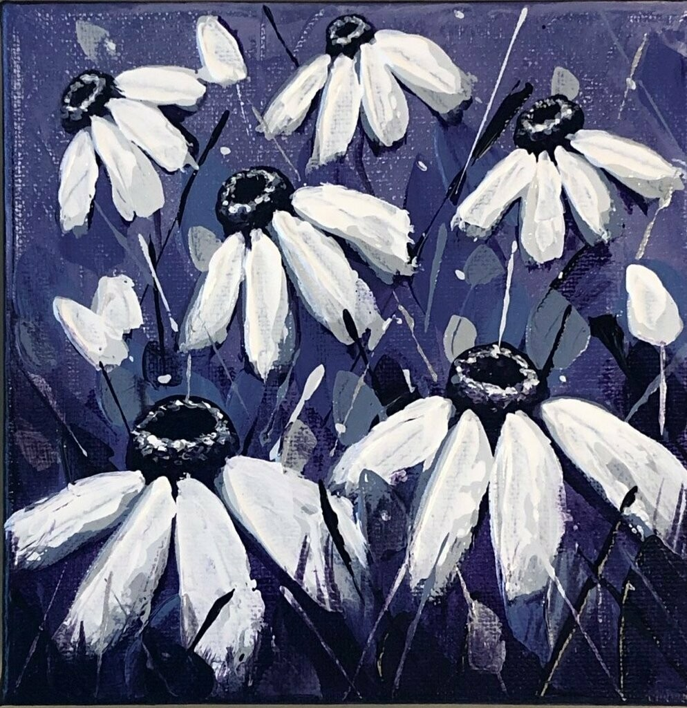 Midnight Daisies