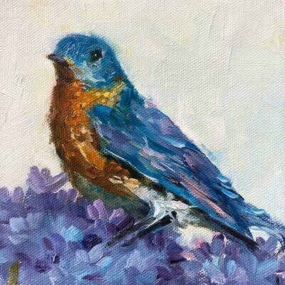 Out of the Blue, Blue Bird 6x6