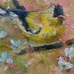 Call Me Sir, Goldfinch 6x6