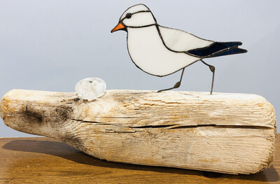 Lynette Richards Stained Glass Seagull With Snail