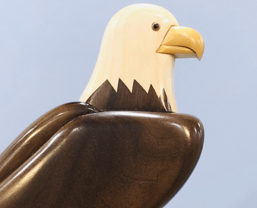 Arbour Bald Eagle