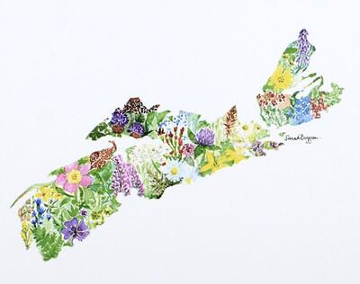 Sarah Duggan Wildflowers of Nova Scotia Print
