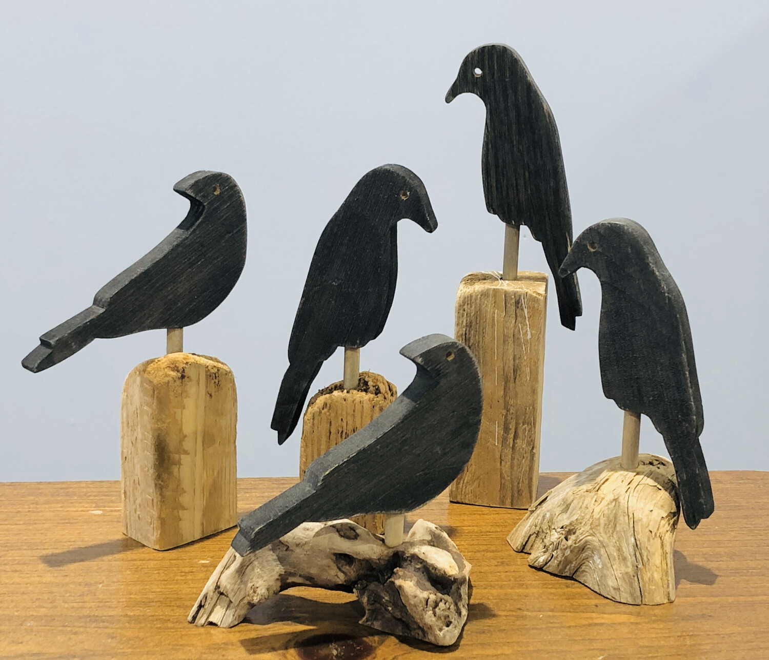 Small Crow on Driftwood