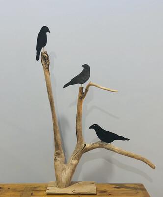 01 Crow Tree 3 Crows