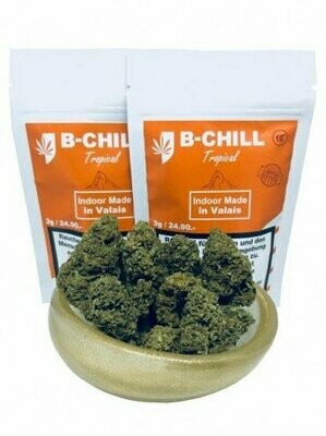 B-CHILL Tropical