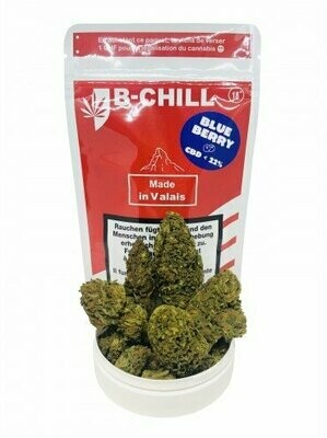 B-CHILL Blueberry MG