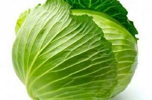 Cabbage 包心菜