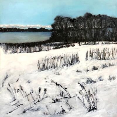 Winter on East Lake