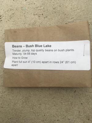 Beans Green Bush Seeds