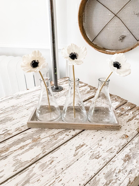 Glass Beaker Vase Trio