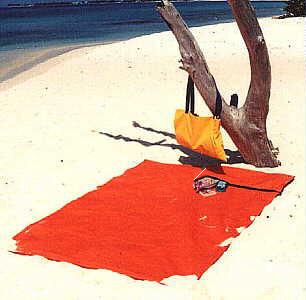 BeachThing Outdoor Mat/Bag