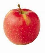 Nicoter Apple 2kg Bag