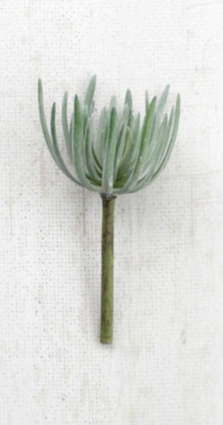 Artificial Gray Succulent