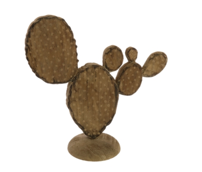 Wooden Paddle Cacti