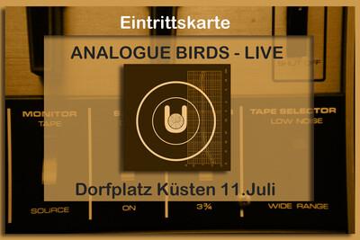 Live-Ticket Analogue Birds Küsten