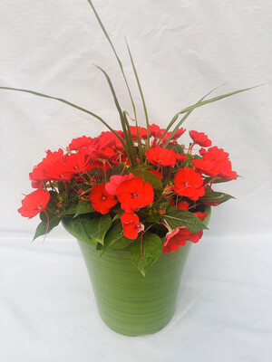 "10"" Red Patio Pot"