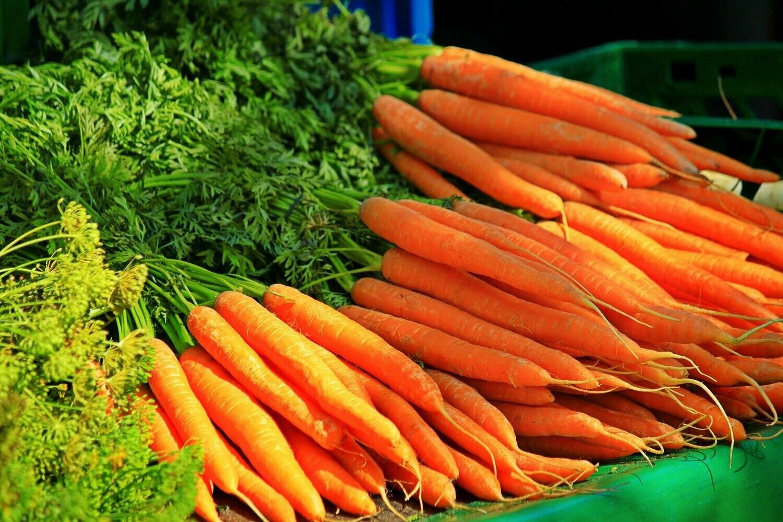 Karotten-Fenchel-Gemüse