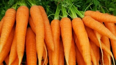 1 lb Bag of whole Carrots